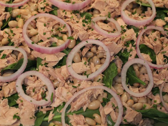Tuna and Cannellini Bean Salad (4)